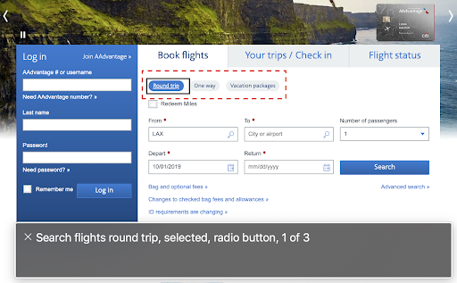 A detail of the American Airlines flight booking form.